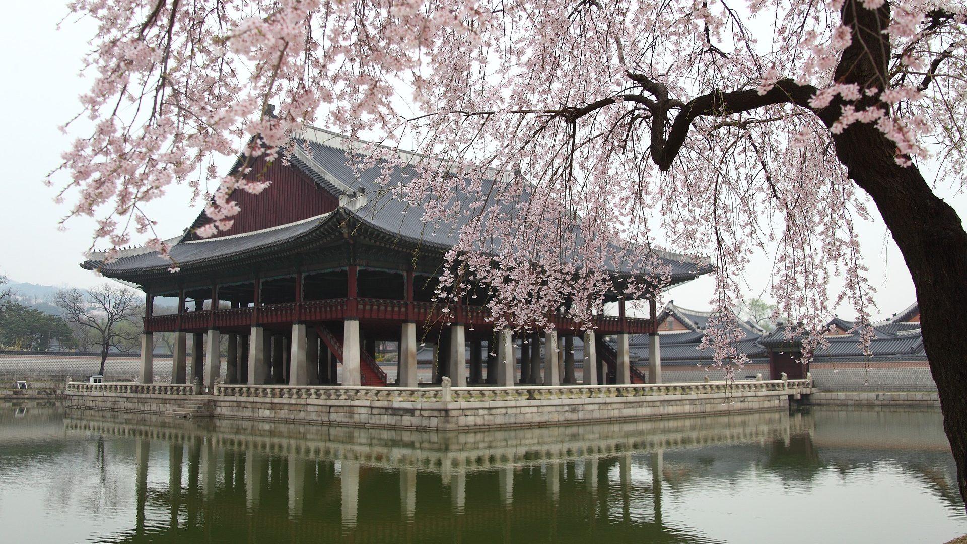 Eating Korea, deel 7: restaurants in Seoul #2