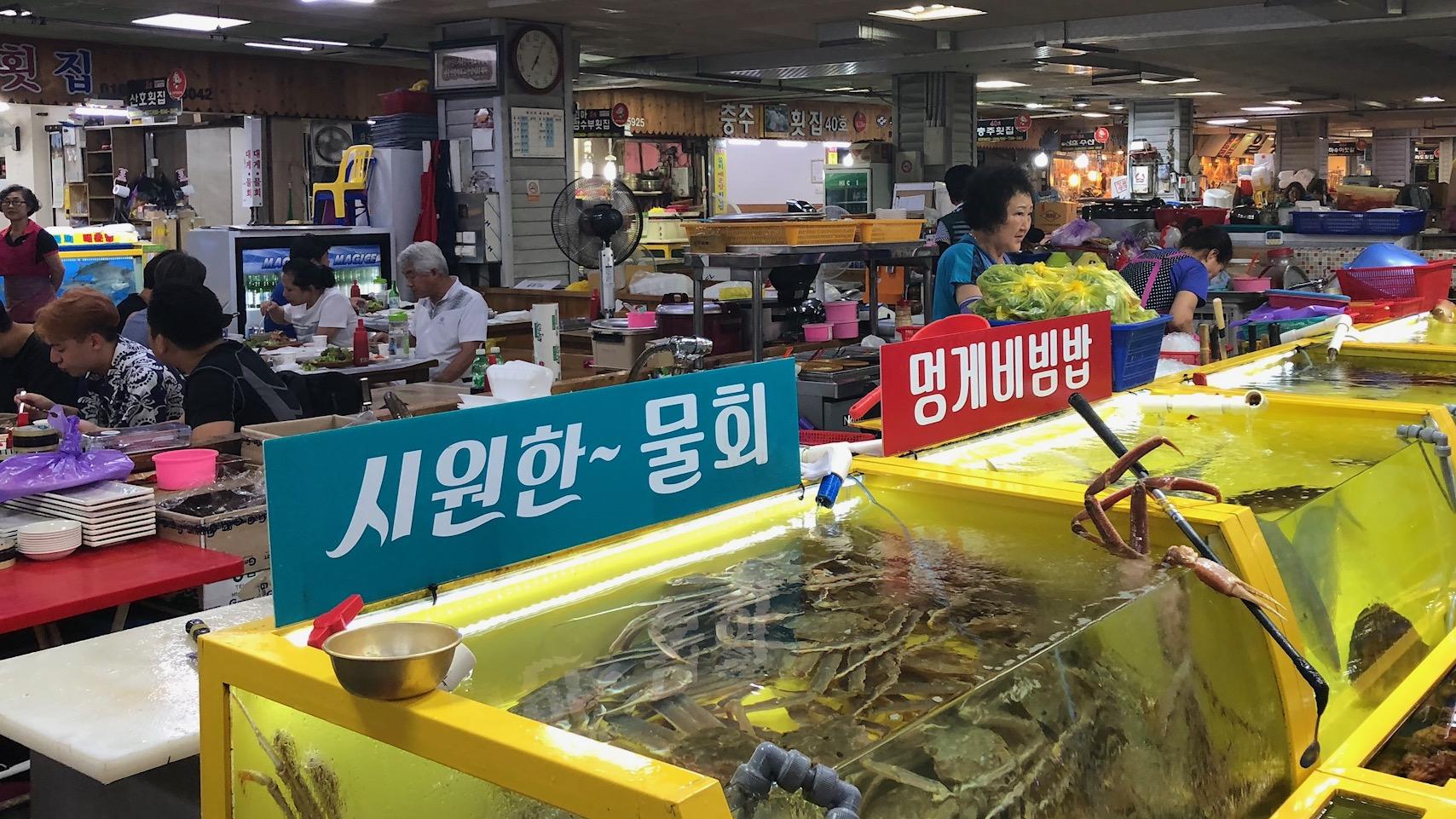 Vismarkt in Sokcho: visje kopen, sashimi eten, soep slurpen