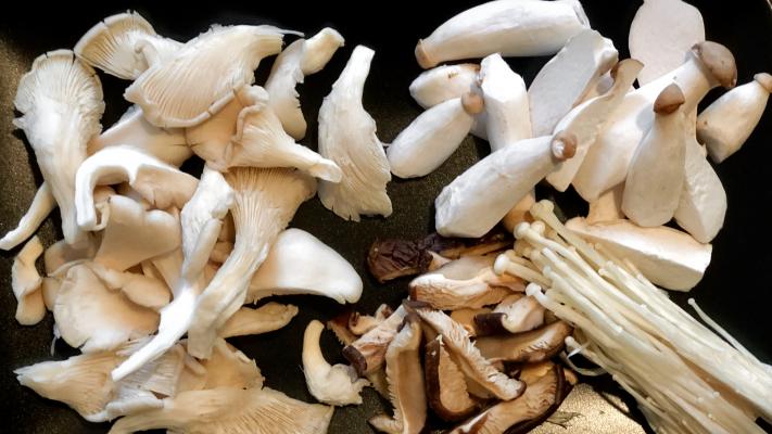 Aziatische paddenstoelen in de spotlight: 5 recepten